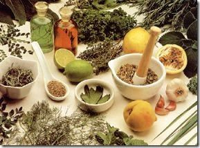 The Instruction Manual For The Human Body – Day 19 – Herbs – (Week 4, Day 7)