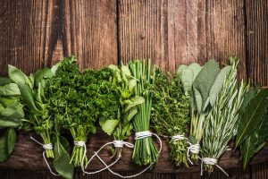 The Instruction Manual For The Human Body – Day 25 – Herbs – (Week 5, Day 6)