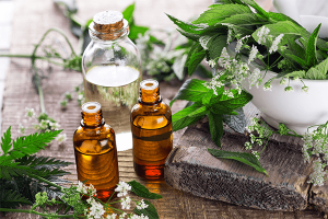 The Instruction Manual For The Human Body – Day 11 – Essential Oils / Probiotics – (Week 3, Day 2)