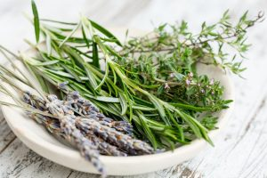 The Instruction Manual For The Human Body – Day 12 – Herbs – (Week 3, Day 3)