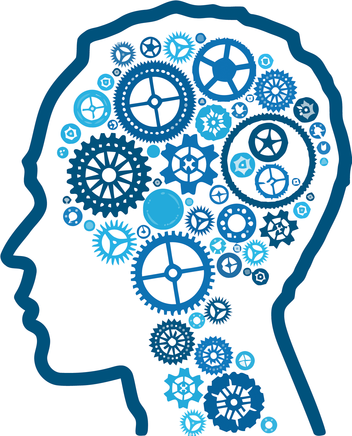 Session 4 – Executive Function & The Brain